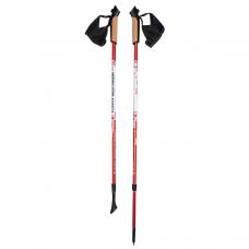 Палки для скандинавской ходьбы NordicStep Avanta c Antishok