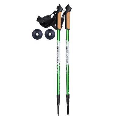 Палки для скандинавской ходьбы NordicStep Corsa c Antishok 3-х секционные