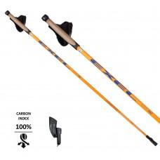 Палки для скандинавской ходьбы Exel Nordic Pro Alis